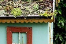 pozsgás zöldtető, succulent green roof / pozsgás zöldtető, succulent green roof