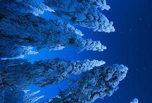 + Azul / Me gusta todo lo azul ☺️