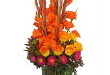 Our Best Sellers / Cactus Flower's best-selling arrangements for delivery in the Phoenix metro area. Cactus Flower is a family-owned florist servicing Phoenix, Scottsdale, Mesa, Glendale, Chandler and Carefree.