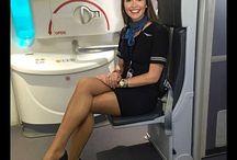Fashion on the Plane