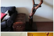 kočky v bytě