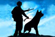The Dog K9
