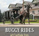 Ohio Amish Trip / by Stephanie Feniello