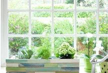 Gardening / Ideas for indoor gardening in my flat/on my balcony