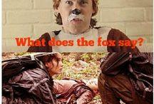 The fox / Oh, my God !