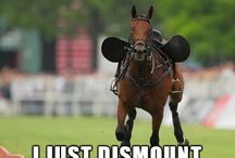 Funny horse quotes!