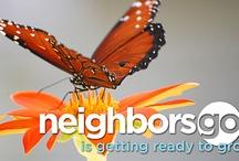neighborsgo: The View Finder / neighborsgo