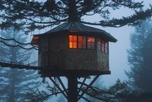 Treehouses - living in the trees!