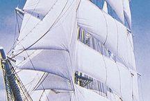Plachetnice, jachty