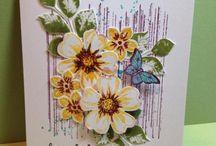 petite petals/petal parade