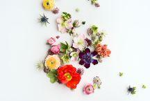 flowers / nekem tetsző virágok