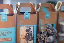 How to Grow Your Own Food / Behind the Scenes @ Oakland's Urban Mushroom Farm / by Back to The Roots
