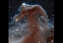 Universe / by Conrad King