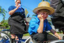 Pinecraft Amish Community