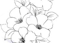 Riscos flores