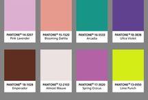 Zomer kleuren