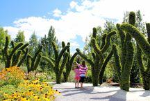 Attraits touristiques / Attractions / À voir et à faire dans la région de Victoriaville