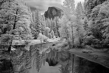 Ansel Adams + / by Les Zimmer
