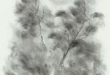 nature / draws