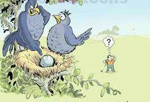 Funny golf cartoons