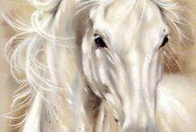 horses -(cavalo)