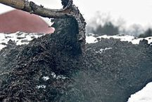 How to Compost / News and tips about composting at home and in your community.