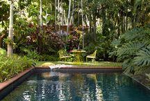 Landscape Garden Idea's