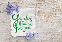 Gardens bloom for you / Spring flowers and lettering