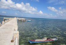 Wakatobi Island, Indonesia /  Southeast Sulawesi, Indonesia