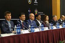 Championnat du Monde 2014 / Le match revanche entre Carlsen et Anand du 8 au 28 novembre 2014 - En direct sur www.chess-and-strategy.com