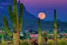 Sweet Home, Arizona / Our lab is located in beautiful Arizona. For those who haven't experienced the greatness of the Southwest, we are here to bring it to you virtually.