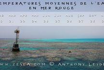 Voyages Plongée sous-marine