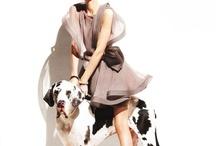 my pet someday;-) / by jen trogs