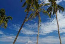 • Maldives •