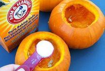 lets explore pumpkins