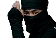 Le Ninja / a person skilled in ninjutsu, a Japanese martial art characterized by stealthy movement and camouflage