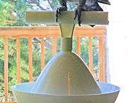 Bird Stands / Bird stands are a fundamental accessory to promote exercise, socialization and encourage foraging behaviors for pet birds.  There are a huge variety of bird stands for every sized bird, from small to large.