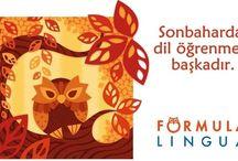 Kampanyalar / Formula Lingua'da birçok kampanyadan faydalanabilirsiniz!