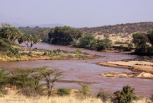 Lowis & Leakey | Kenya Safari  / With its abundant wildlife and incredible cultural diversity Kenya has been synonymous with safaris for decades.