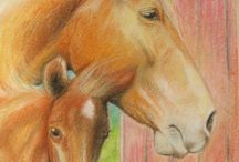 Horse drawings / My equine art. In this folder you can find pencil, pastel and coloured pencil drawings.