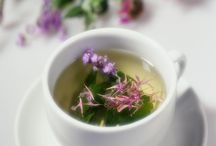 Herbal Preparation Techniques / From salves, to tinctures, to infusions ~ what are these herbal preparation techniques & how do I decide which to use?