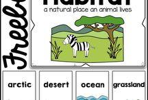 animal habitat lesson