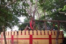 Premises of Garoi Ashram / View of Garoi Ashram and its premises, Garoi, Jagatsinghpur, Odisha, India