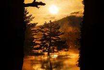 Doğa Fotoğrafçılığı / Harika manzaralar!
