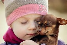 Chihuahua Love <3