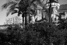 Black & White / Black & White Photography