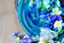 Flowery world