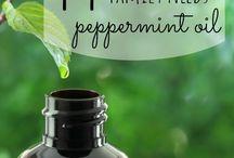 Косметические масла / Рецепты, применение, полезные свойства.