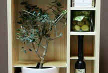 OliveProducts