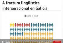 Fractura lingüística interxeracional / cambio de lingua en Galicia, MSG-92, IGE-08